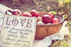 Kristi_Mark_Apple_Orchard_Sweetheart_Engagement_Session_Dana_Ann_Photography_1-h.jpg 900×600 pixels