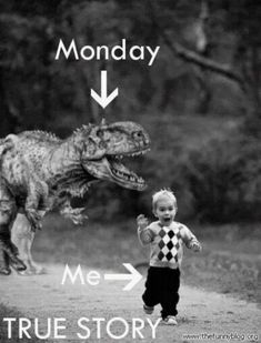 This is amazing! LOl Funny dino/dinosaur/T Rex Birthday invitation 9gag Funny, Funny Monday Memes, Monday Quotes, Motivational Monday, Fun Quotes, Quotes Inspirational, Life Quotes, Dinosaur Birthday Party, 4th Birthday Parties