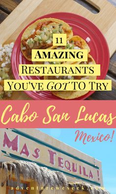 It's sunny, it's beautiful and there's some amazing food to be had in Cabo San Lucas, Mexico. These are the 11 best restaurants is Cabo San Lucas to eat at. Mexico Vacation Outfits, Cabo San Lucas Mexico, San Jose Del Cabo, Best Places To Eat, Mexico Travel, Great Recipes, Travel Guide, Travel Ideas, Traveling By Yourself