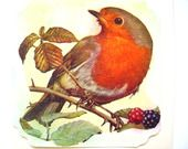 """Carte postale de voeux """" Le Rouge-gorge et les mûres """". : Cartes par matt-et-les-petits-cadeaux"""