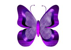 Butterfly Clipart | Jewels Art Creation