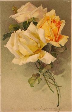 ✿Fragrant Scent Of Roses✿ Catherine Klein ~ yellow roses Catherine Klein, Art Vintage, Vintage Flowers, Vintage Floral, Orange Flowers, Yellow Roses, China Painting, Rose Art, Arte Floral