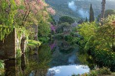Il giardino di Ninfa è un luogo ricco di fascino, archeologico e botanico, legato alla storia della famiglia Caetani che a fine 800 iniziò questa opera