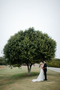 Bride and Groom Nature Tree Photo