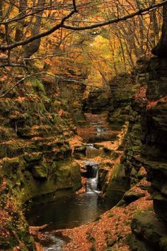 Hiking & Camping - Baraboo WI on Pinterest | Swimming Holes, US ...