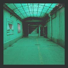 dagligabilder:  [133] green tunnel