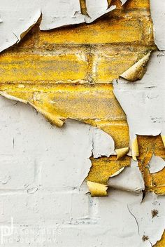 peeling wall yields a yellow surprise High Contrast Photography, Texture Photography, Peeling Paint, Go For It, Foto Art, Shades Of Yellow, Mellow Yellow, Grey Yellow, Mustard Yellow