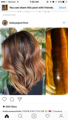 Lob + tiger eye balayage Short Hair Lengths, Short Hair Styles, Dye My Hair, New Hair, Tiger Eye Hair Color, Hair Color Techniques, Medium Short Hair, Haircut And Color, Hair 2018