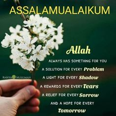 Good Morning Greetings, Good Morning Wishes, Morning Messages, Good Morning Image Quotes, Morning Sayings, Beautiful Islamic Quotes, Beautiful Dua, Happy Birthday Quotes, Birthday Wishes