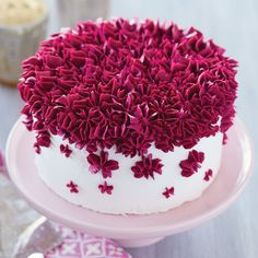 Make a striking cake that's sure to grab attention with this Filled with Fuchsia Drop Flower Cake. Featuring stars piped in a trendy jewel tone, this little buttercream cake is great for a small party or shower for the bride. A great beginner project, thi Fancy Cakes, Mini Cakes, Cupcake Cakes, Beautiful Cakes, Amazing Cakes, Icing Flowers, Wilton Cake Decorating, Wilton Cakes, Buttercream Frosting