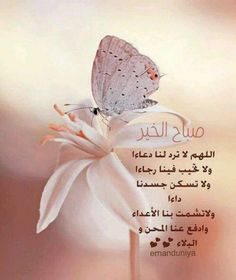 Good Morning صباح الخير