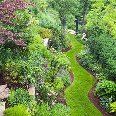 A garden path to find the magic a garden has to offer!