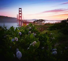 Golden Gate Bridge by Vincent James Photography by San Francisco Feelings