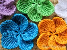 (4) Name: 'Crocheting : Plumeria Flower