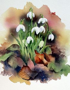This image is a wonderful illustration that beauty can be found not only in the fresh and delicate first spring flowers of the season but also in crisp dead leaves... Wonderful artistic use of the watercolour medium.