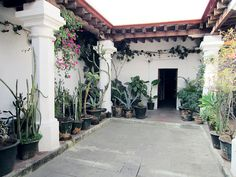 OAXACA.08 by Scout & Catalogue, via Flickr