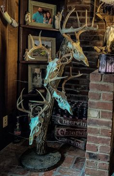 Made from a tree that had barbed wire grown through. Cement base with rebar 'T' to hold tree. Deer Hunting Decor, Deer Head Decor, Taxidermy Decor, Taxidermy Display, Deer Skull Art, Deer Skulls, European Mounts Deer, Antler Decorations, Deer Mount Decor