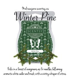 Scentsy 2016 | Winter Pine | New Holiday | Fall & Winter | #scentsy #scentsy #scentsy #scentsy #scentsy  #scentsy #scentsy #scentsy #scentsy #scentsy #scentsy #scentsy #fall #winter #fall #winter #fall #winter #fall #winter #fall #winter #fall #winter #fall #winter #fall #winter #fall #winter #love #inspiration #popular #favorite #love #inspiration #popular #favorite #love #inspiration #popular #favorite