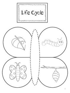 Butterfly Interactive Lapbook – Life Cycle, Counting, Colors Source by Graphing Activities, Preschool Crafts, Preschool Activities, Bug Crafts, Stages Of A Butterfly, Butterfly Life Cycle, Bee Life Cycle, Butterfly Crafts, Butterfly Colors