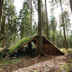 http://Papr.Club - Another cool link is LowCostCarTransport.com  The shelter end is build with rafters and roots, and with a…