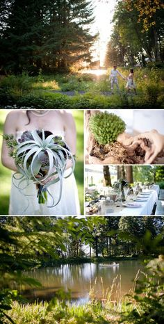 Air plant bouquet and nature inspired wedding