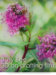 Busy Bee: 3D Colored Pencil Project Kit - Instant Download