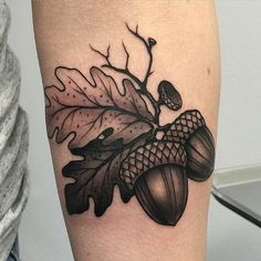 What does acorn tattoo mean? We have acorn tattoo ideas, designs, symbolism and we explain the meaning behind the tattoo. Oak Leaf Tattoos, Vine Tattoos, Up Tattoos, Nature Tattoos, Sleeve Tattoos, Tatoos, Pinecone Tattoo, Acorn Tattoo, Piercing Tattoo