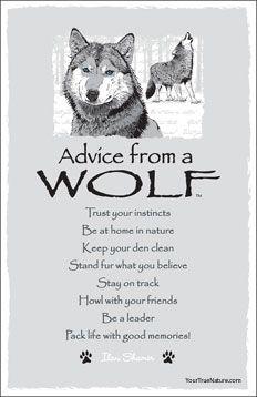 Advice from a Wolf Frameable Art Postcard