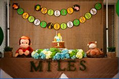 animal themed birthday parties - Google Search