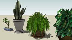 INDOOR PLANTS - 3D Warehouse
