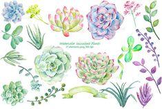 Watercolor Clipart Succulent Plants by Corner Croft on Creative Market Colorful Succulents, Succulents Diy, Planting Succulents, Planting Flowers, Succulent Plants, Succulent Images, Succulents Drawing, Watercolor Succulents, Watercolor Flowers