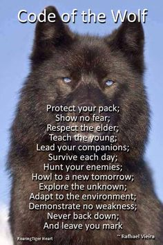 Code of the wolf.some of the reasons for my wolf tattoo Life Quotes Love, Great Quotes, Quotes To Live By, Me Quotes, Motivational Quotes, Inspirational Quotes, Qoutes, Funny Quotes, Respect Quotes
