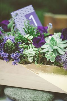 Modern Moroccan Wedding Inspiration / Les Amis Photo - nice table arrangement using succulents (green) and low purple flowers