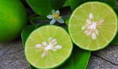 ¡10 cualidades del limón chiquito!