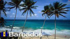 barbados - Google Search