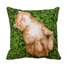 Sweet small cat pillow