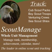 InsaneScouter - Christmas Toys - Activities Pre-Openings - Scout Resources