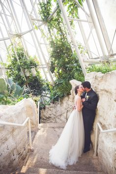 Intimate Houston Museum of Natural Science Wedding   Ama Photography and Cinema
