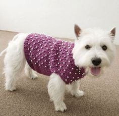 Dog Sweater Free Pattern - Media - Crochet Me