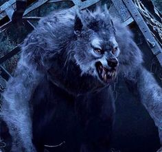 Van Helsing werewolf....best one I believe.