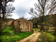 Caminos de paz... Sierra de #Gudar!