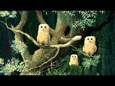 Owl Babies Picture Book Animation - YouTube Autumn Activities, Book Activities, Baby Owls, Baby Animals, Owl Babies Book, Owl Moon, Album Jeunesse, Read Aloud Books, Online Stories