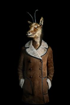 Humanized Anthropomorphic Photography - Photographer Miguel Vallinas Creates Odd Animal Pieces (GALLERY)