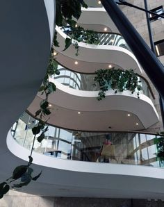 Interior Landscaping The Hague   Watervalbeplanting