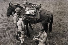 1940s: Horseback The US Army Signal Corps communicate via radio in the ...