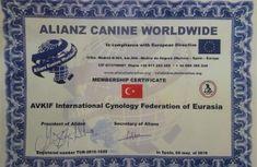 Türkiye'nin Resmi Kinoloji (Köpek Kedi Otantik Irklar) Federasyonu AVKIF | AVKIF Cards, Map, Playing Cards, Maps
