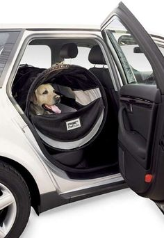 Keep Your Pet Safely In The Backseat While Driving With This Auto