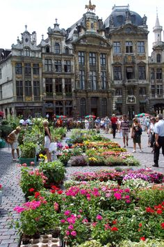 Brussells, Belgium                                                            Grand Plaas in the middle of the Capital.