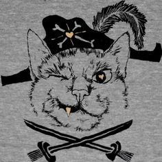 Pirate Cat Super Soft Vintage Inspired Athletic Unisex Track Tee