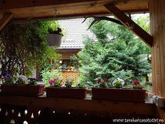 LA MOARA CU NOROC DIN OHABA | TarabacuAmintiri Plants, Planters, Plant, Planting